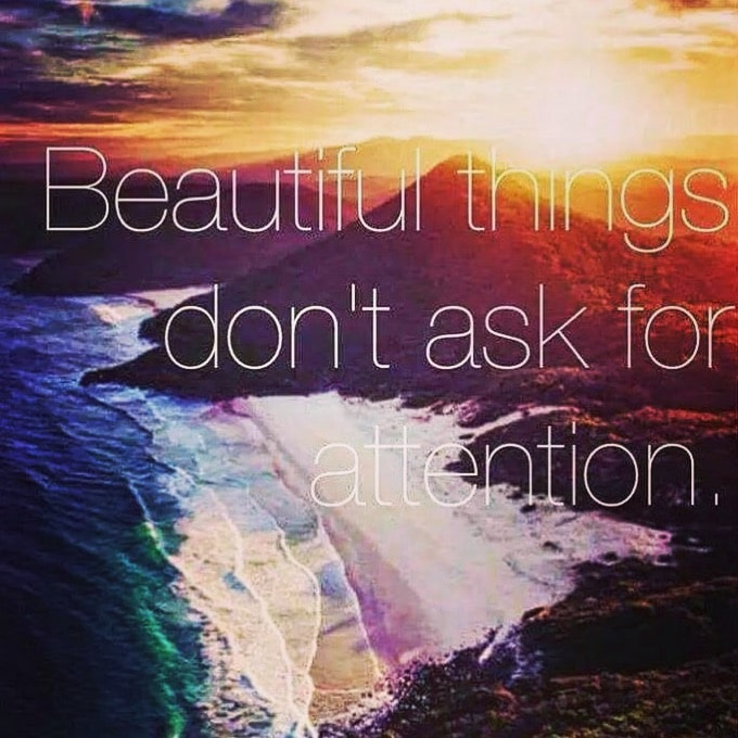 Beautiful Things Don T Ask For Attention Shamanic