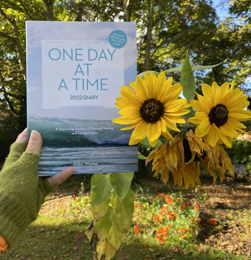 One Day at a Time Diary